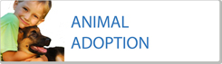 Adoption of animals